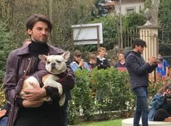 Pet fashion alla Varese design week