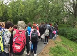 Nuovo ingresso scuola media Vidoletti Varese