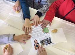 Porto Ceresio - educazione alimentare