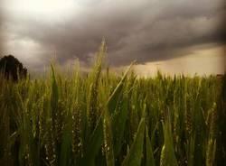 Sesto Calende, prima del temporale
