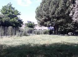 Al Parco di via Giotto erba alta