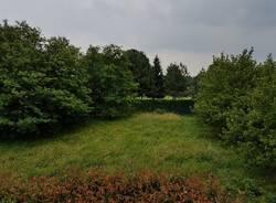area verde via novara solbiate olona variante pgt