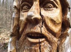 Le sculture del bosco incantato