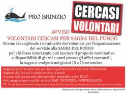 La Pro Loco Brinzio cerca volontari per la Sagra del Fungo 2018