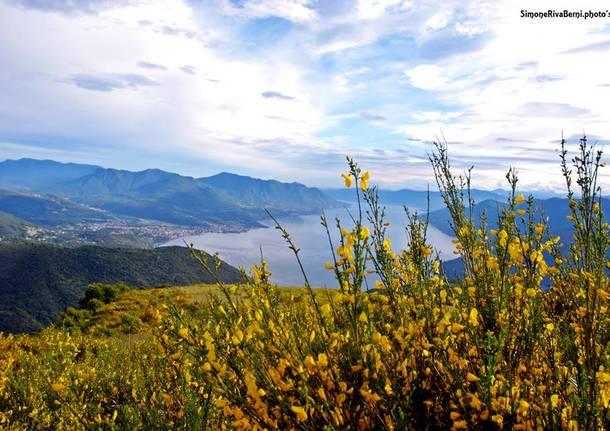 Lago Maggiore dalla Forcora - foto di Simone Riva Berni