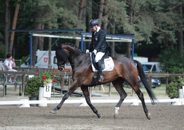 meeting equestre somma
