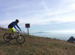 Monte San Giorgio - varie
