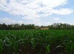 parco altomilanese agricoltura bottega agricola