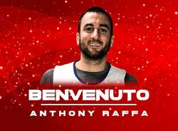 anthony raffa knights legnano