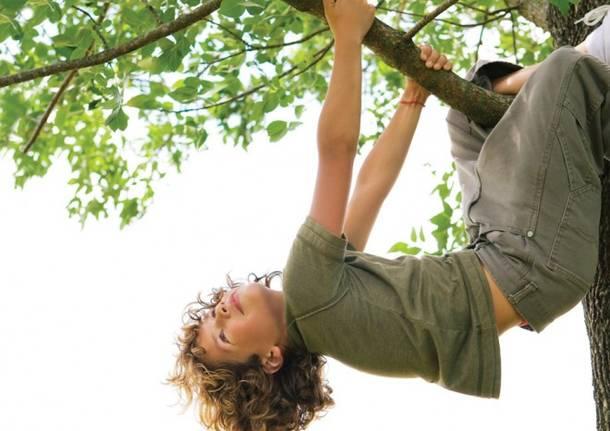 bimbo sull'albero