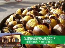 Castagnata pro Asilo