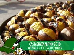 Castagnata Alpina