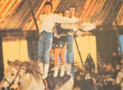 circo medini travedona monate