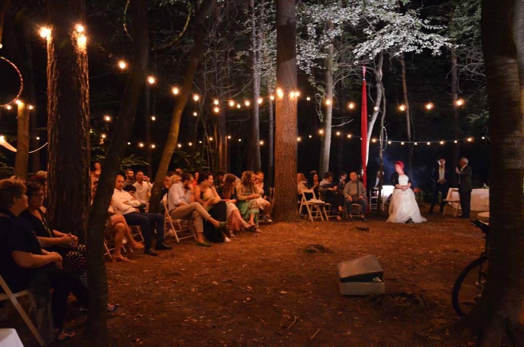 Circus Wedding Party