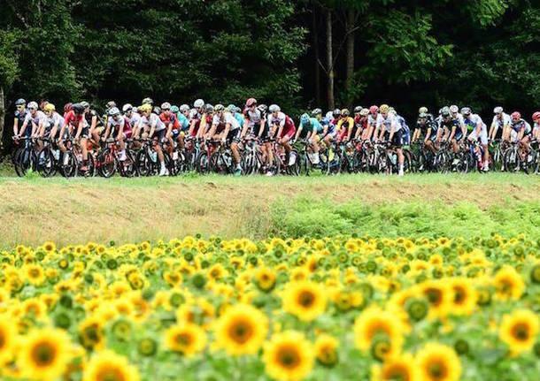 tour de france ciclismo maglia gialla