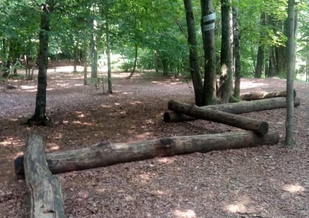Giochi tra gli alberi al Wild Land di Brinzio