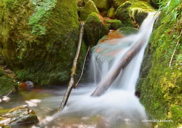 Brusimpiano, torrente Trallo - foto di Alberto Capoferri