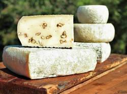 Un giorno da pastori: Capruccino a colazione e pranzo di formaggi