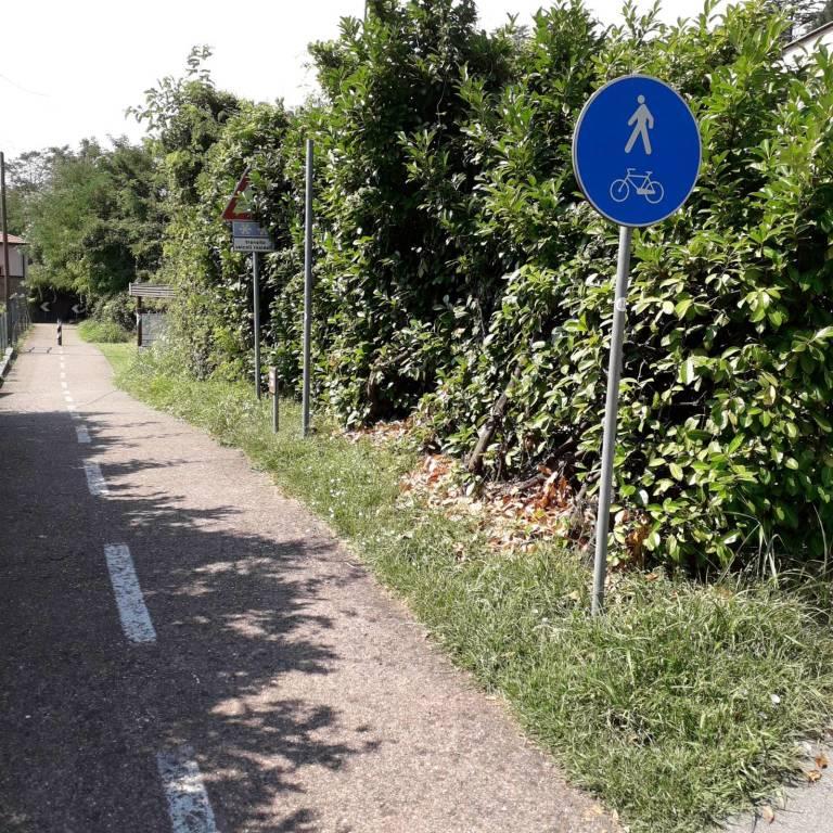 Pulizia delle piante sulla ciclabile, Varese c'è