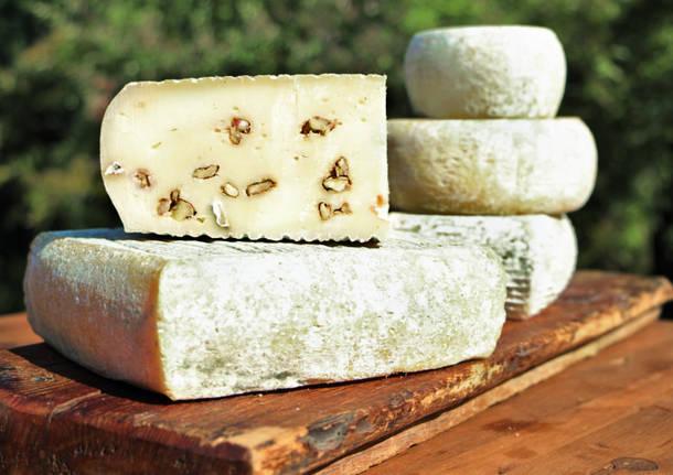 Pastori per un giorno: Capruccino a colazione e pranzo di formaggi locali