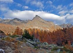 foliage parco nazionale gran paradiso