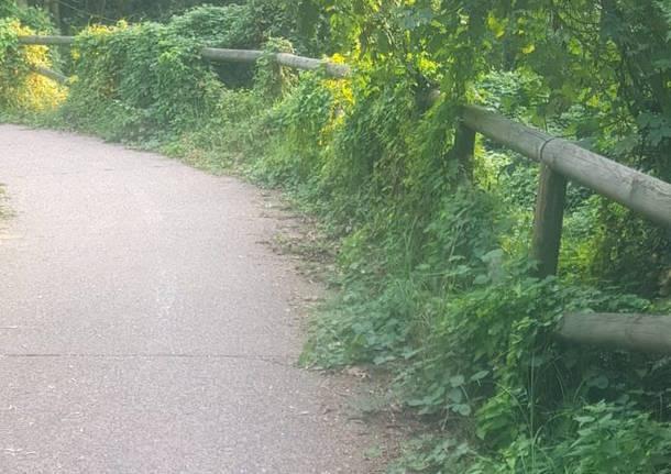Il degrado della pista ciclabile di Varese
