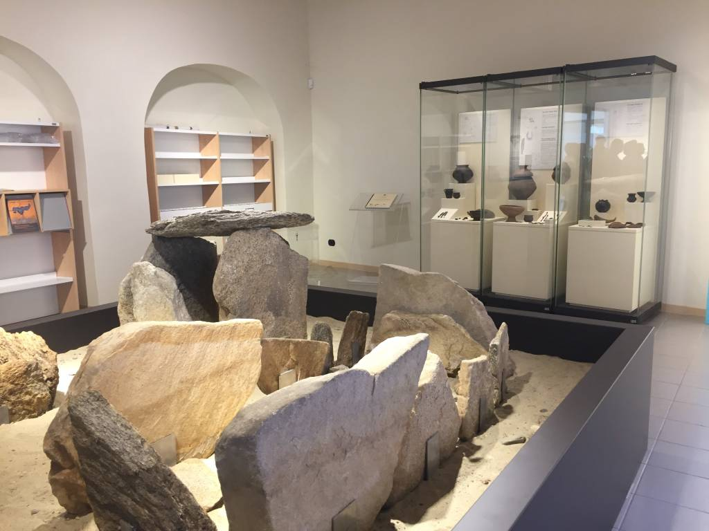 Museo civiltà Golasecca