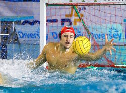 pallanuoto sport management gianmarco nicosia