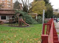 albero caduto scuole ronchi