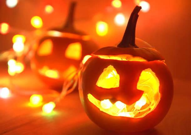 Immagine Zucca Di Halloween 94.Streghe Zucche E Pipistrelli Arriva La Notte Di Halloween
