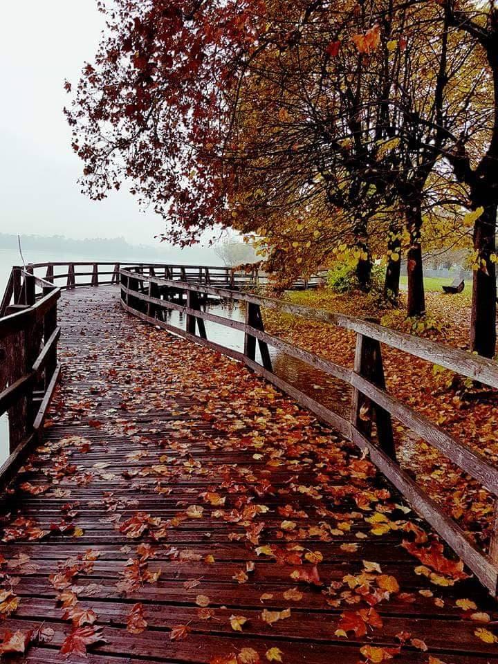 Acqua e autunno...