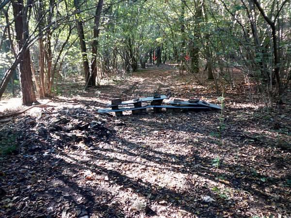 Rifiuti nei boschi di Gornate
