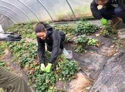 Una giornata di volontariato per Timberland