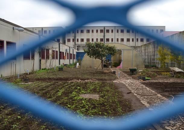 Le novità nel carcere di Busto