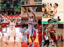 basket collage