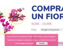 campagna acquista un fiore per l'autismo