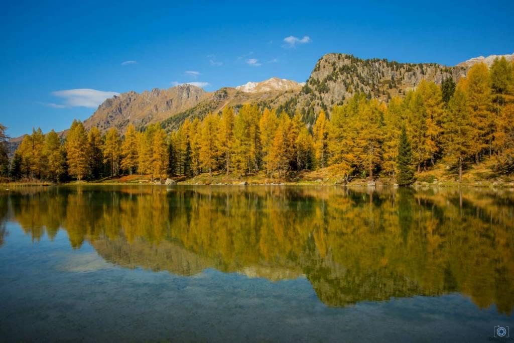 Il foliage autunnale sulle nostre Alp