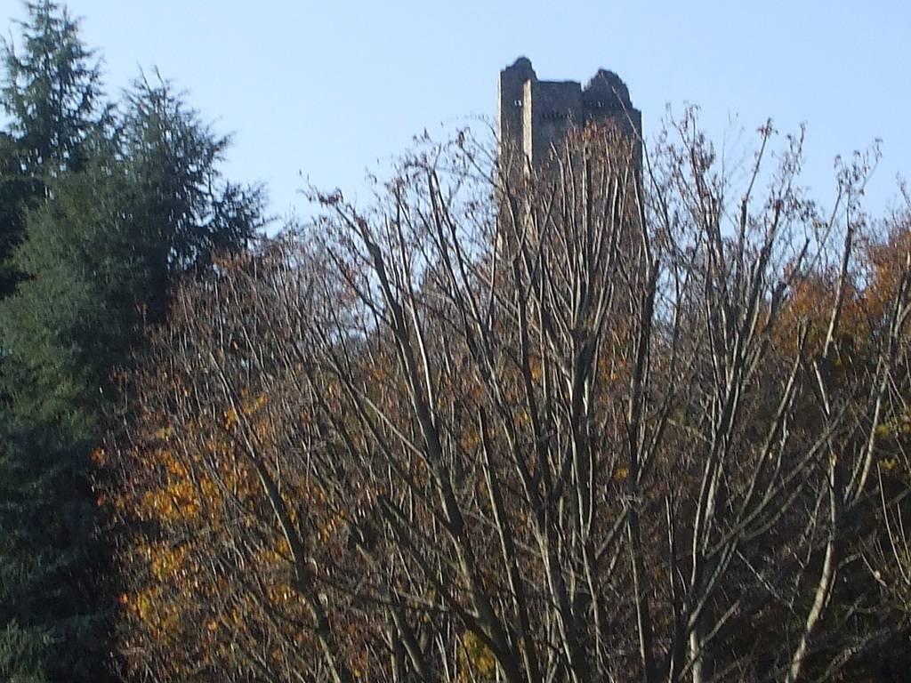 La Torre si è scoperta.....