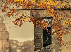 Cuasso al Monte - foto di Isella Bellotti
