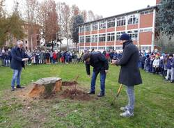festa degli alberi busto arsizio 2018