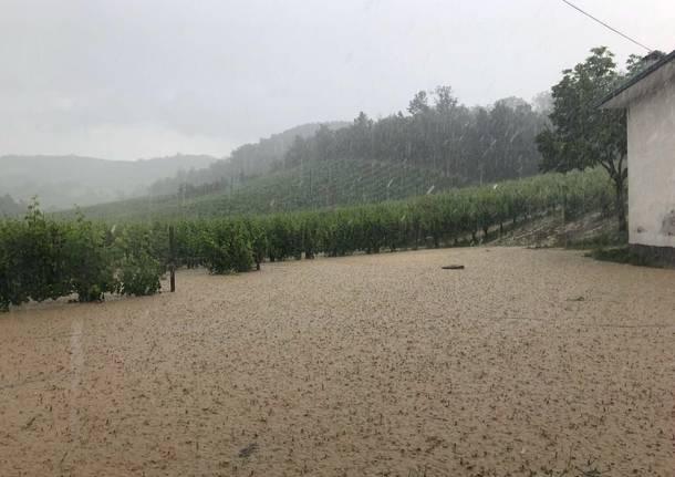 maltempo pioggia campagne