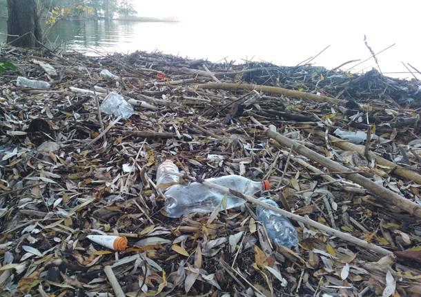 Il lago a Ispra restituisce rifiuti