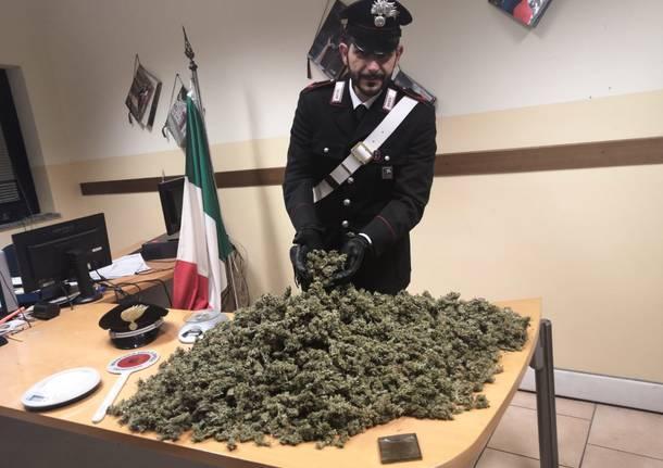 marijuana carabinieri busto arsizio