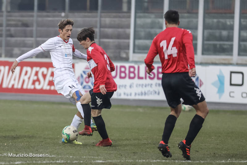 Varese - Accademia Pavese 3-0