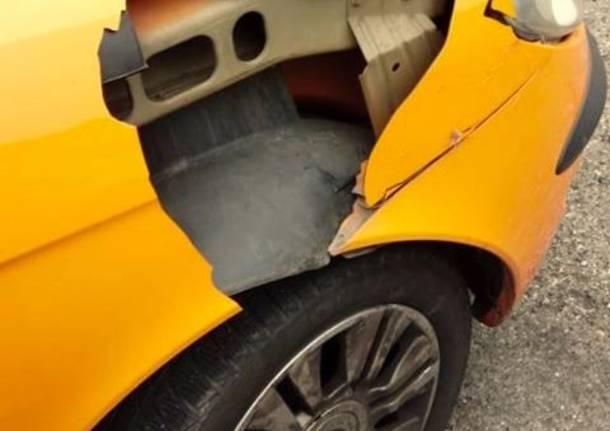 Scontro auto – cervo a Gornate Olona