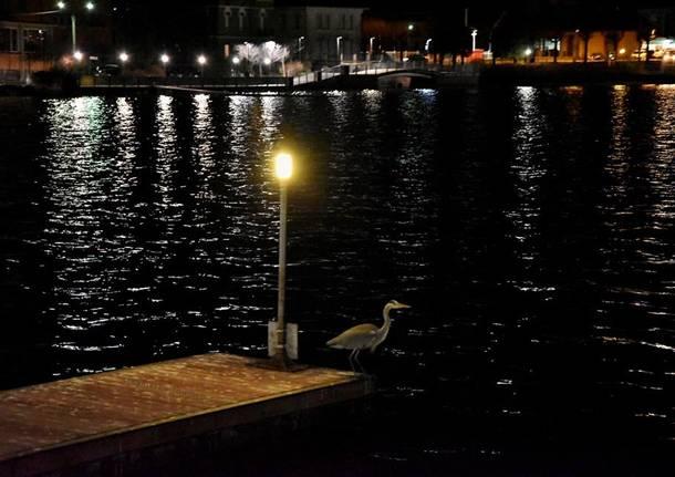 Porto Ceresio - Foto di Gianpietro Toniolo