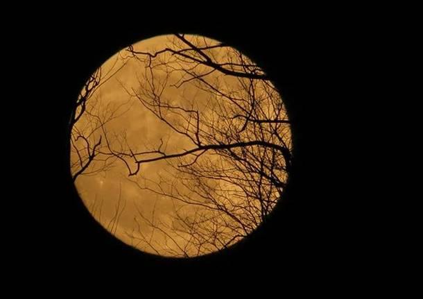 Aspettando l'eclissi