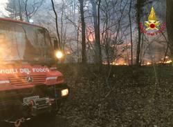 I vigili del fuoco sul fronte delle fiamme di fianco alla statale