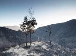 Martica, dopo l'incendio - foto di Luca Zulianello