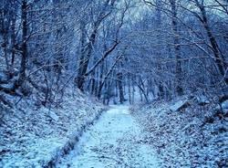 neve nevicata cuasso andrea betti